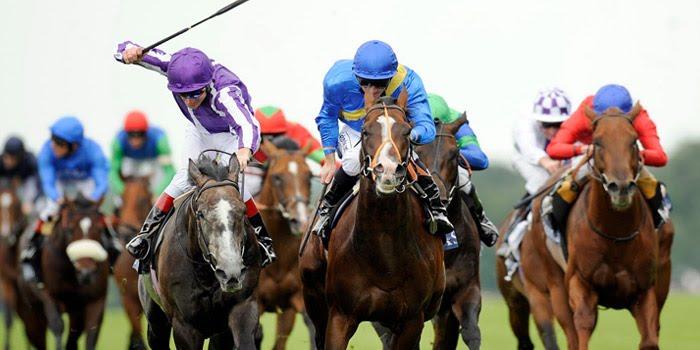 ม้าแข่งออนไลน์-การแข่ง