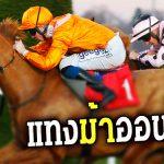 ม้าแข่งออนไลน์-หน้าปก